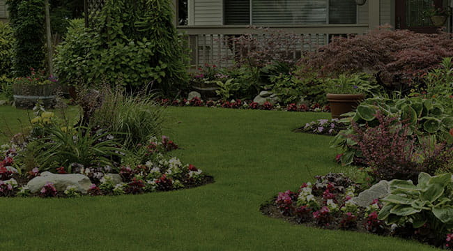 Homestead Landscape Design