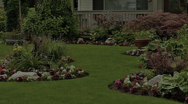Homestead Landscape Design